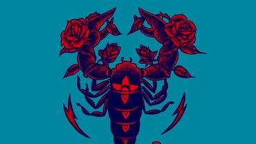 Totul despre ascendentul în zodia Scorpion. Ce defecte moștenești de la acest semn de apă