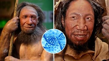 Descoperirea care ar putea schimba teoriile evoluției umane. Noua verigă lipsă între omul preistoric și cel modern