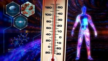 Intoleranța la căldură, simptome și tratament. Ce temperatură maximă poate suporta corpul uman