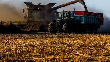 Legea vânzării terenurilor agricole, cu dedicație pentru baronii locali! Cum se mai poate cumpăra teren extravilan