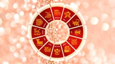 Zodiac chinezesc: joi, 3 iunie 2021. Nativul Iepure are nevoie de ajutor