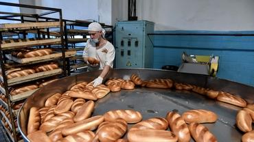 Românii sunt cei mai mari consumatori de pâine ai Uniunii Europene. Cât a consumat un cetățean în ultimii 5 ani
