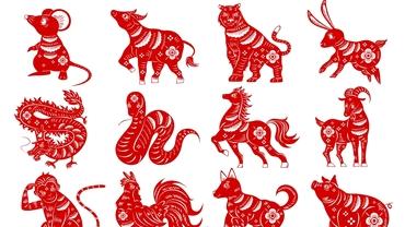 Zodiac chinezesc: luni, 21 iunie 2021. Nativul Iepure este măcinat de o problemă din trecut
