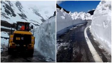 Strat de zăpadă de peste șase metri pe Transfăgărășan. Cât va dura eliberarea completă a drumului. Video