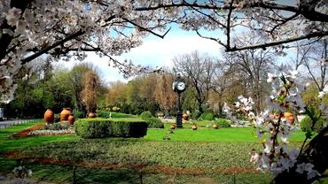 Istoria parcului Cișmigiu, cea mai veche grădină din Bucureşti. Cum a ajuns o băltoacă cel mai frumos loc de agrement din capitală
