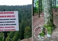 Ce a găsit un român plecat într-o drumeţie pe munte! Motivul incredibil pentru care s-au revoltat oamenii