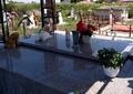 Cum arată mormântul Denisei Răducu la patru ani de la moartea artistei! Galerie foto