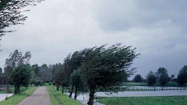 COD GALBEN de vreme severă. Vezi zonele vizate de avertizare