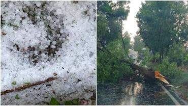 O furtună puternică a afectat Timișoara. Grindină, copaci doborâți și o casă lovită de trăsnet. Video