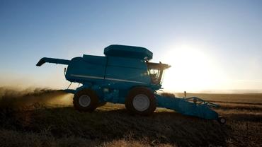 Străinii vor putea cumpăra din nou terenuri agricole. Micii fermieri, scoși din joc și de PSD, și de PNL