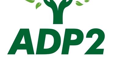Scandal înainte de alegeri în Sectorul 2! Replică dură a celor de la ADP. Plângere penală pe numele Monicăi Anisie și a șefei DSP, Oana Nicolescu