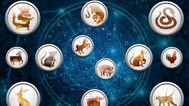 Zodiac chinezesc pentru vineri, 20 august 2021. Bivolii pot începe o nouă relație