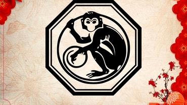 Zodiac chinezesc: marți, 8 iunie 2021. Maimuța are parte de provocări