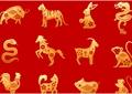 Zodiac chinezesc pentru marți, 21 septembrie 2021. Mistreții au de trecut un obstacol