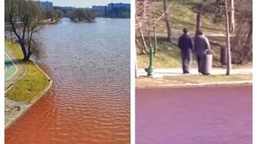 Din ce cauză este roșie apa lacului din Parcul IOR. Explicațiile autorităților