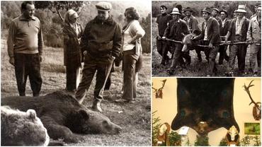 Nicolae Ceaușescu, record mondial în privința vânatului la urși! Cum a ucis un exemplar crescut în cuşcă şi a devenit legendă