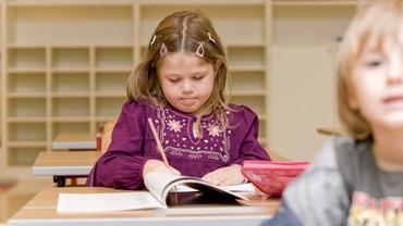 Propunere radicală pentru anul școlar 2021 - 2022. Vacanță mai scurtă și trimestre în loc de semestre