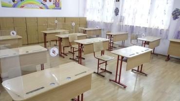 Subiecte limba română Bacalaureat 2020. Ce a picat la examenul de anul trecut!