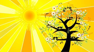 Ce efecte are solstițiul de vară din 21 iunie 2021. Ce să nu faci în această zi, în funcție de zodie