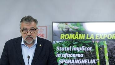 """PSD, prima reacție după decizia CEDO: """"Nu avem nicio vină"""""""