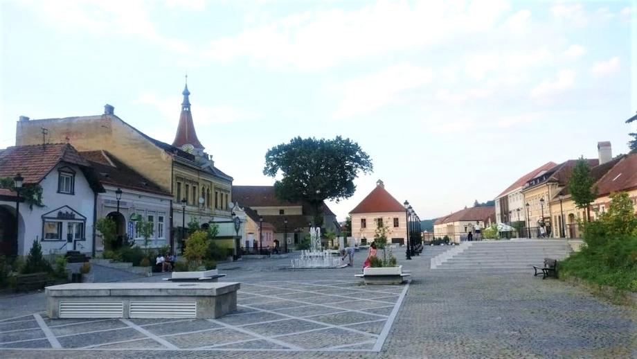 Alertă în Râșnov. Un virus necunoscut a îmbolnăvit zeci de persoane