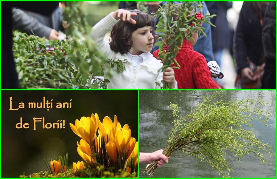 """De Florii zâmbește și iubește! Și trimite un mesaj """"jumătății"""" tale dacă are nume de floare! Să-ți trăiască!"""