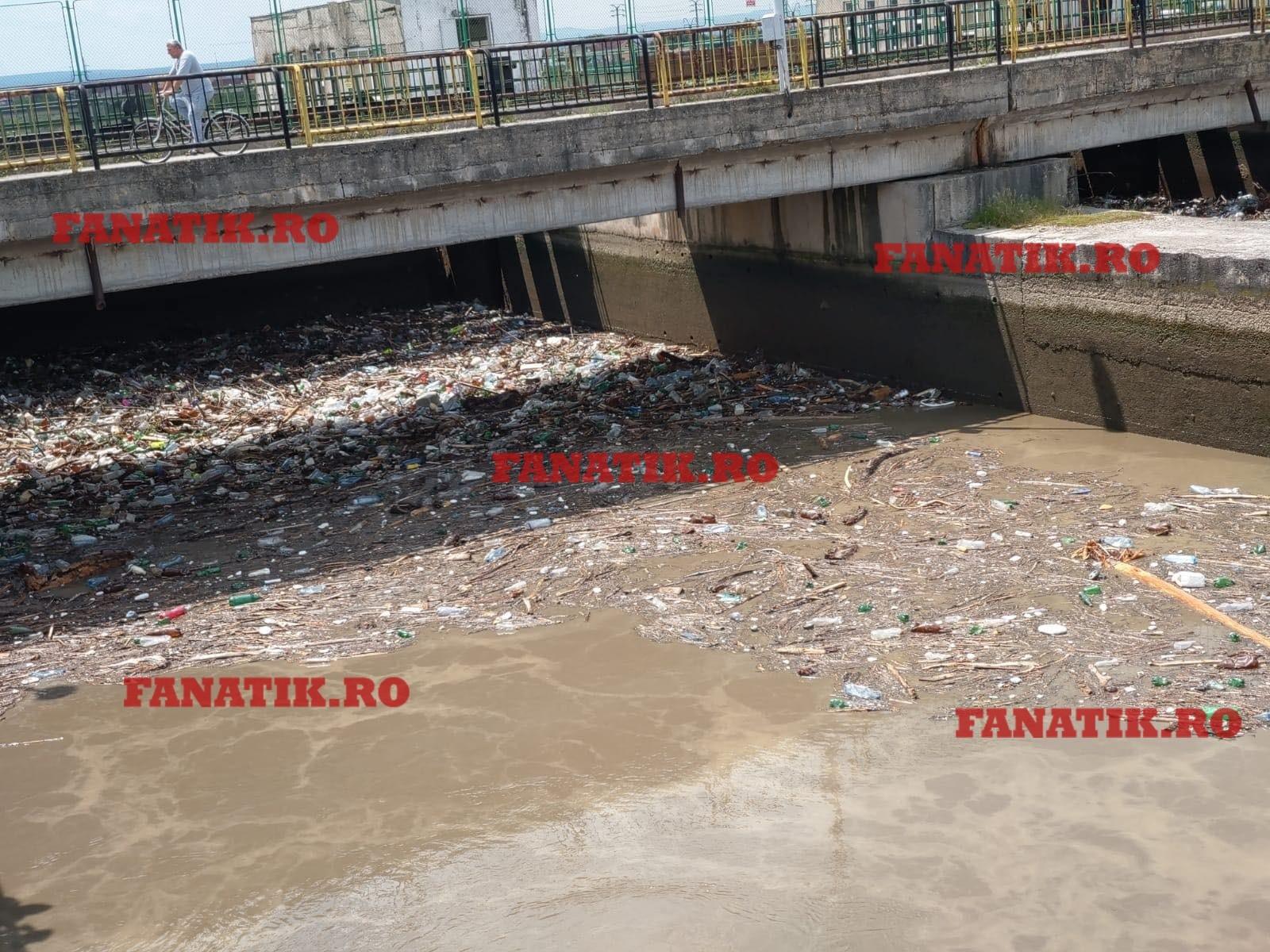Mii de sticle din plastic și alte pet-uri au rămas blocate în barajul din Piața Centrală din Târgu Jiu, după ce debitul apei s-a mărit