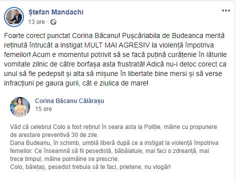 Postarea despre Dana Budeanu