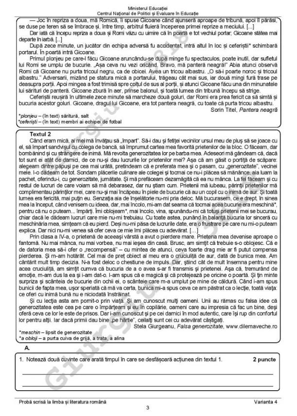 Evaluarea Națională: Subiecte limba română