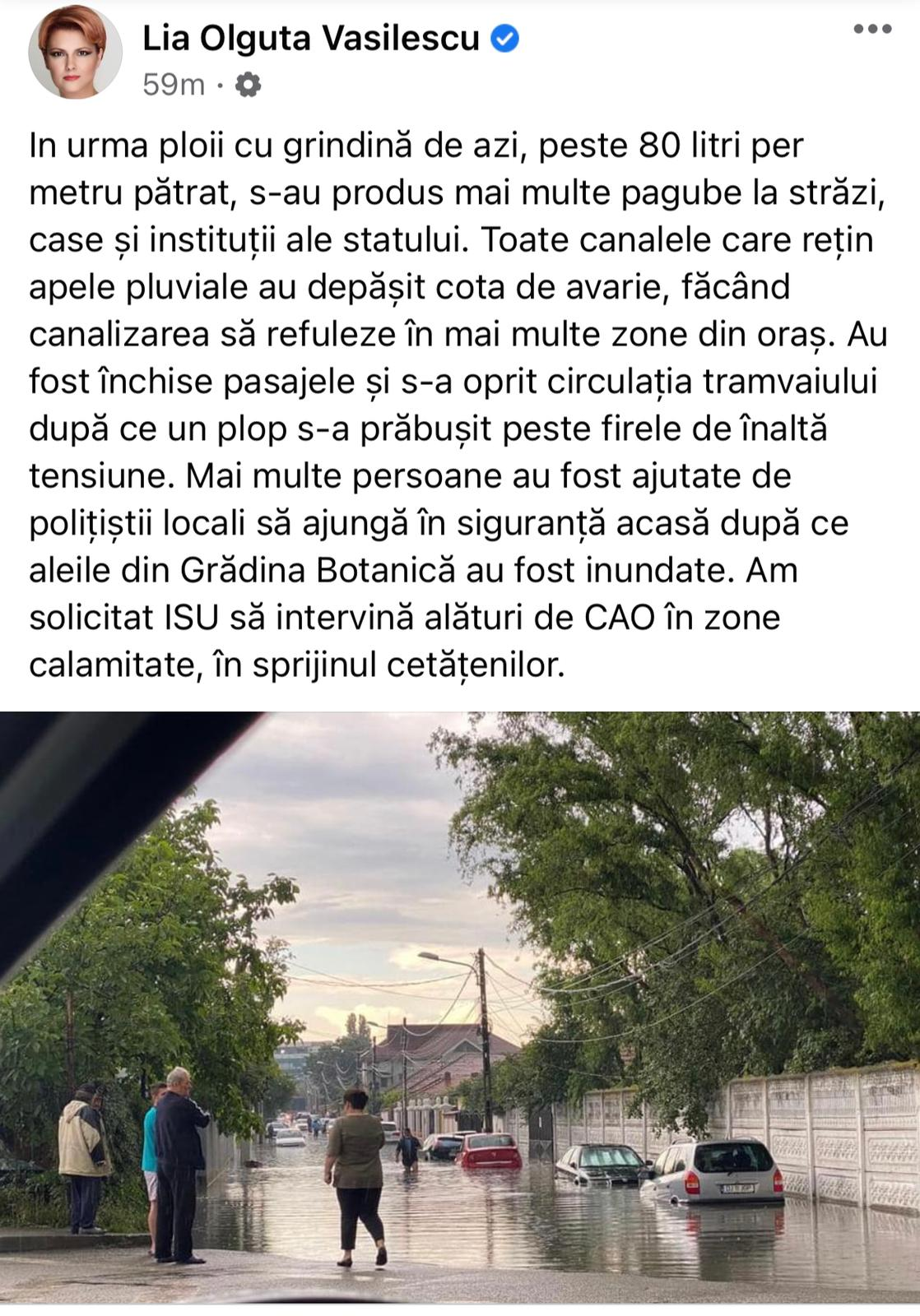 Lia Olguța Vasilescu postare